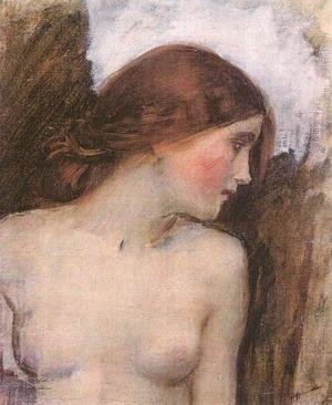 Waterhouse - Study for the Head of Echo  1903