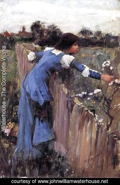 Waterhouse - The Flower Picker study 1900